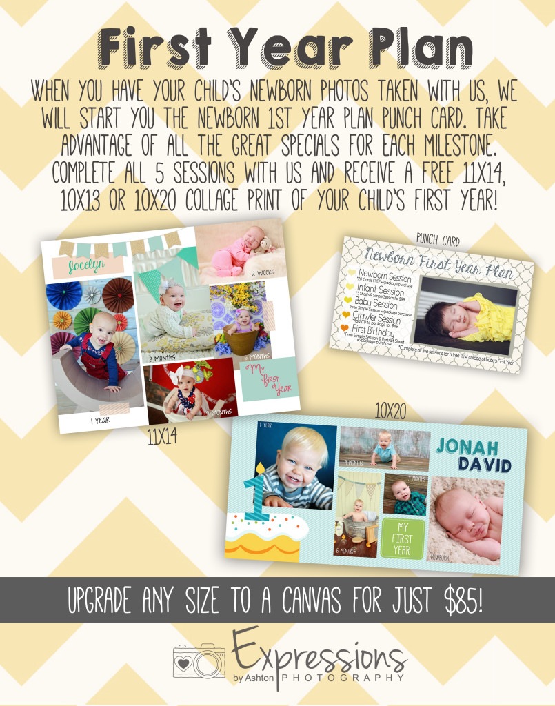 newborn 1st year plan display